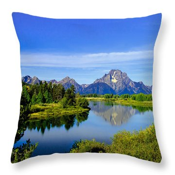 Oxbow Bend Throw Pillow by Robert Bales