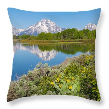 Throw Pillow featuring the photograph Oxbow Bend Wildflowers In Spring by Aaron Spong