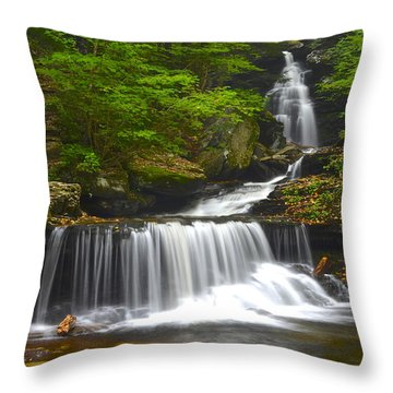 Ozone Falls Throw Pillow by Frozen in Time Fine Art Photography