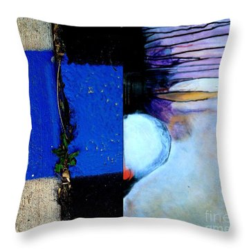 p HOTography 137 Throw Pillow by Marlene Burns