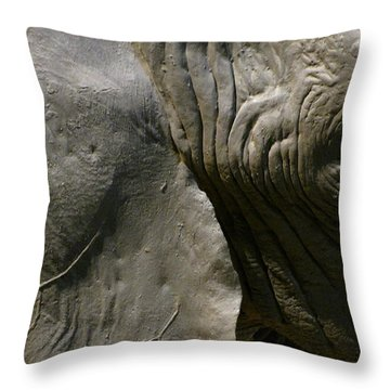 Throw Pillow featuring the photograph Pachyderm by Jennifer Wheatley Wolf