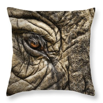 Pachyderm Skin Throw Pillow by Daniel Hagerman