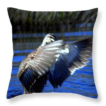Throw Pillow featuring the photograph Pacific Black Duck by Miroslava Jurcik