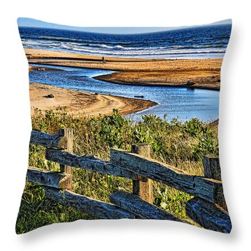 Throw Pillow featuring the photograph Pacific Coast - 4 by Mark Madere