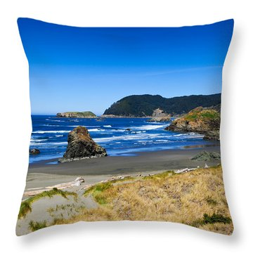 Pacific Coast Throw Pillow by Donald Fink