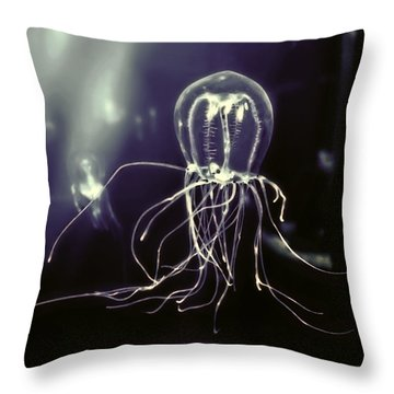 Pacific Fluorescent Jellyfish Throw Pillow