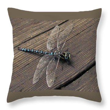 Pacific Forktail Throw Pillow