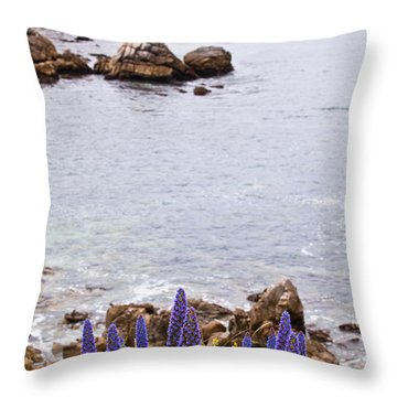Pacific Grove Coastline Throw Pillow by Melinda Ledsome