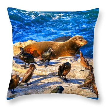 Throw Pillow featuring the photograph Pacific Harbor Seal by Jim Carrell