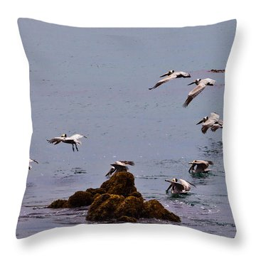 Pacific Landing Throw Pillow by Melinda Ledsome