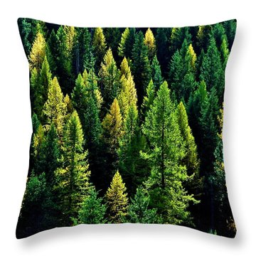 Throw Pillow featuring the photograph Pacific Northwest Autumn by Benjamin Yeager