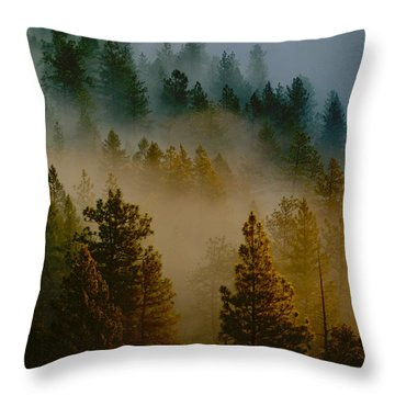 Throw Pillow featuring the photograph Pacific Northwest Morning Mist by Ben Upham III