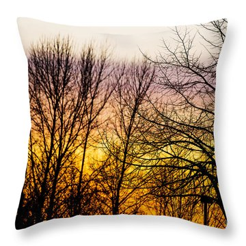 Pacific Northwest Rainbow Colored Twilight Throw Pillow by MaryJane Armstrong