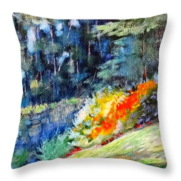 Pacific Nw Light #1 Throw Pillow