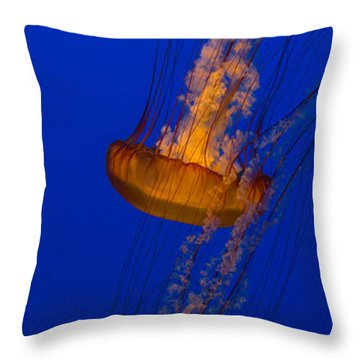 Pacific Sea Nettles In A Row Throw Pillow