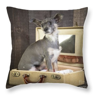 Packed And Ready To Go Throw Pillow by Edward Fielding