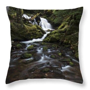Packer Falls #3 Throw Pillow