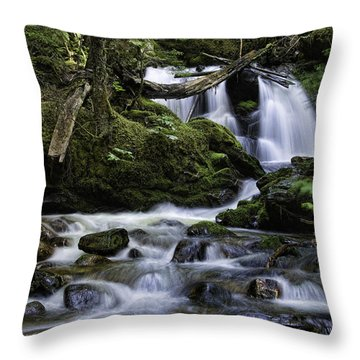 Packer Falls And Creek Throw Pillow