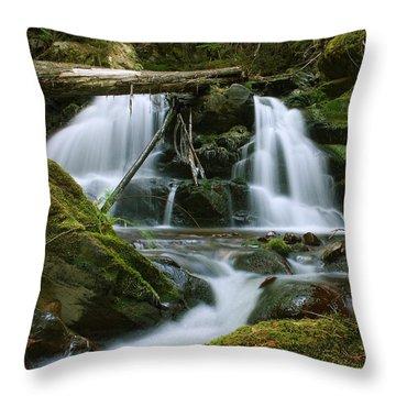 Packer Falls Throw Pillow