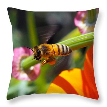 Packin Poppy Pollen Throw Pillow