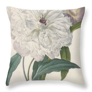 Paeonia Flagrans Peony Throw Pillow
