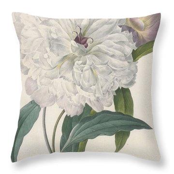 Paeonia Flagrans Peony Throw Pillow