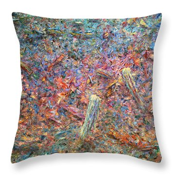 Paint Number 37 Throw Pillow by James W Johnson