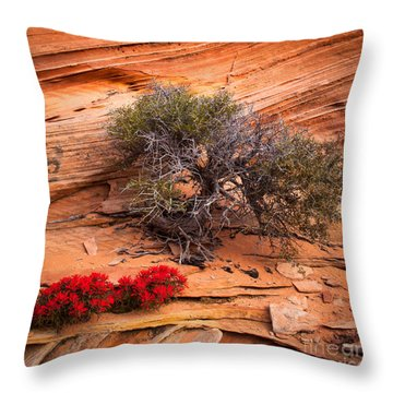 Paintbrush And Juniper Throw Pillow by Inge Johnsson