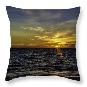 Painted By God Throw Pillow