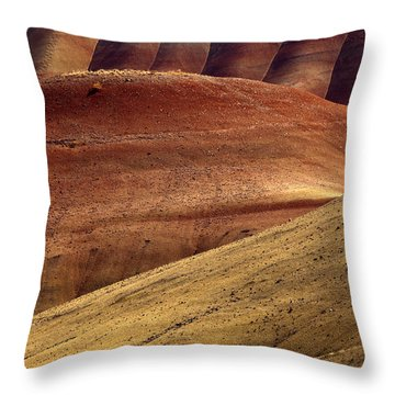 Painted Curves Throw Pillow by Mike  Dawson