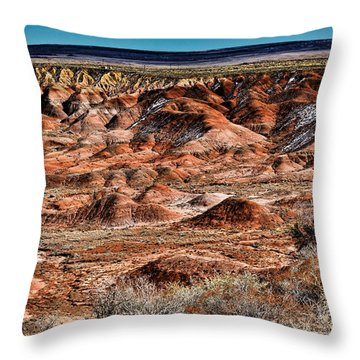 Painted Desert In Winter Throw Pillow