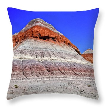 Throw Pillow featuring the photograph Painted Desert National Park by Bob and Nadine Johnston