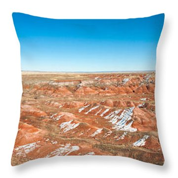 Painted Desert, Petrified Forest Throw Pillow