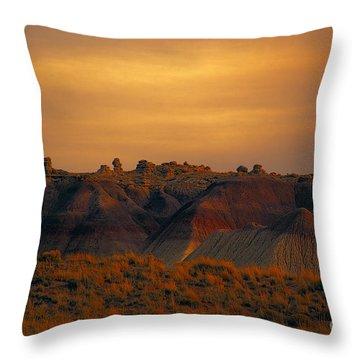 Painted Desert V4 Throw Pillow