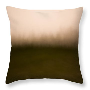 Painted Dolly Sods Throw Pillow