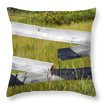 Painted Fence Throw Pillow