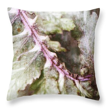 Painted Fern Throw Pillow