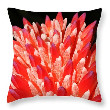 Painted Fingers Throw Pillow