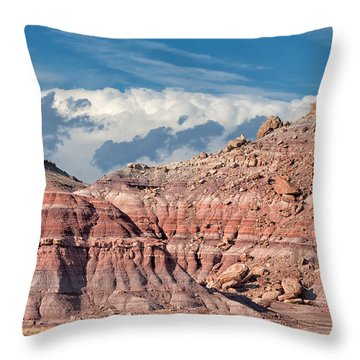 Painted Hills Of The Upper Jurrasic Throw Pillow