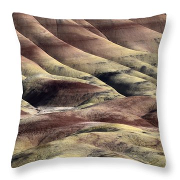 Painted Hills Oregon 11 Throw Pillow by Bob Christopher