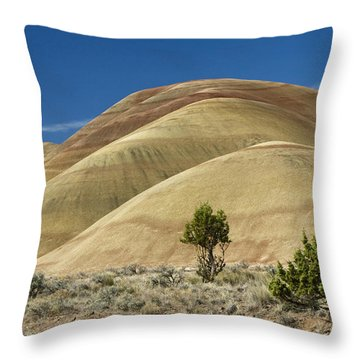 Throw Pillow featuring the photograph Painted Hills by Sonya Lang
