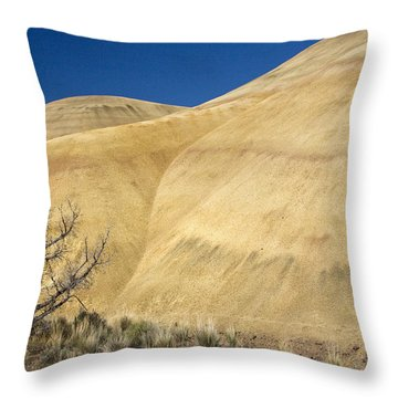 Throw Pillow featuring the photograph Painted Hills Tree by Sonya Lang