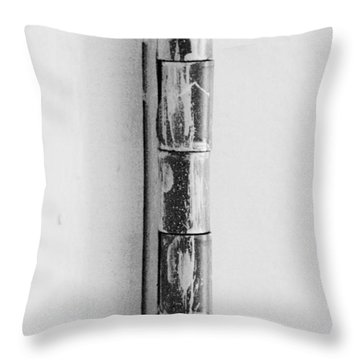 Painted Hinge In Black And White Throw Pillow by Rob Hans