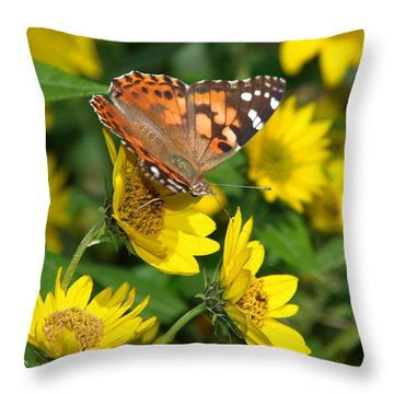 Throw Pillow featuring the photograph Painted Lady by James Peterson
