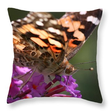 Throw Pillow featuring the photograph Painted Lady On Butterfly Bush by William Selander