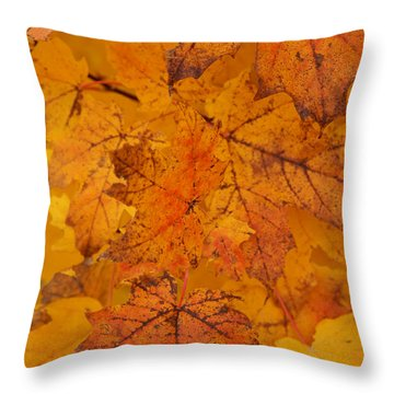 Throw Pillow featuring the photograph Painted Leaves Of Autumn by Linda Shafer
