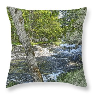 Painted Mountain Stream  Throw Pillow by Will Burlingham