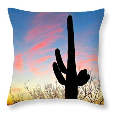 Throw Pillow featuring the photograph Painted Sky by Brenda Pressnall