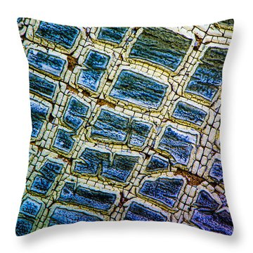 Painted Streets Number 1 Throw Pillow