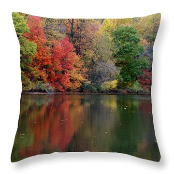 Throw Pillow featuring the photograph Painted Water by Richard Bryce and Family